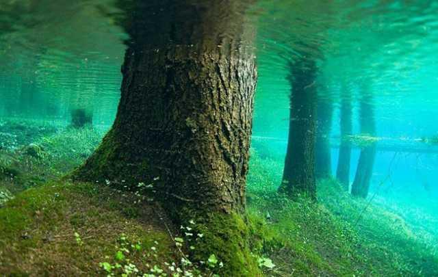 green-lake-11