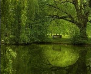 green-lake-5